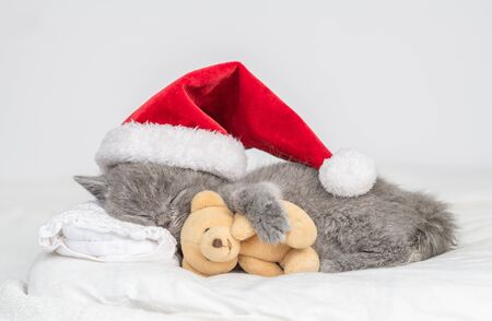 Baby kitten in red christmas hat sleep on pillow under blanket with toy bear.