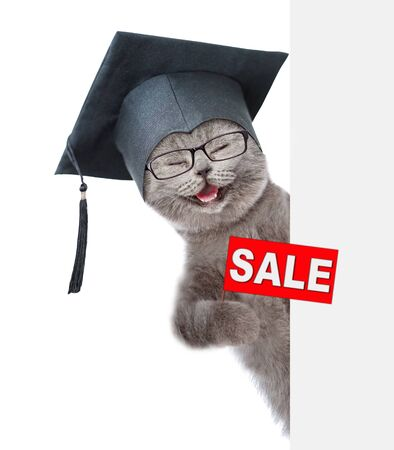 Happy kitten in graduation cap holding sales symbol above empty white banner. isolated on white background. Stok Fotoğraf