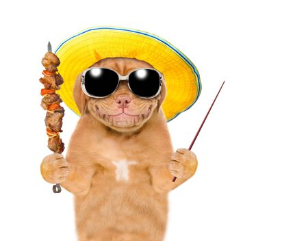 Smiling puppy in summer hat and sunglasses with grilled meat on skewer and pointing away on empty space. isolated on white background. Stock fotó