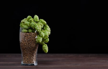 Beer glass with malt and fresh green of hops like a foam on dark wooden table. Black background. Empty space for text.