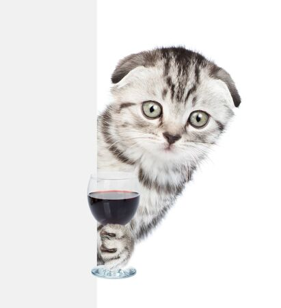 Cat holding glass of red wine behind empty banner. isolated on white background.