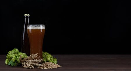 Craft beer with fresh green of hops and wheat and malt on dark wooden table. Empty space for text. Black background.