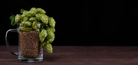 Mug with malt and fresh green of hops like a foam on dark wooden table. Empty space for text. Black background.