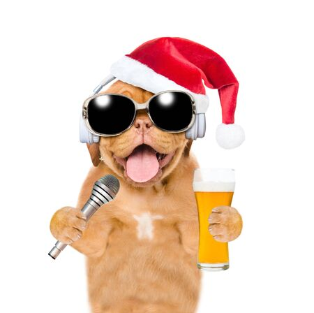 Happy puppy wearing a sunglasses and red christmas hat holds beer and a microphone. isolated on white background.