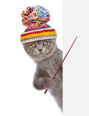 Cat wearing a warm hat peeks and points on empty space banner. isolated on white background.
