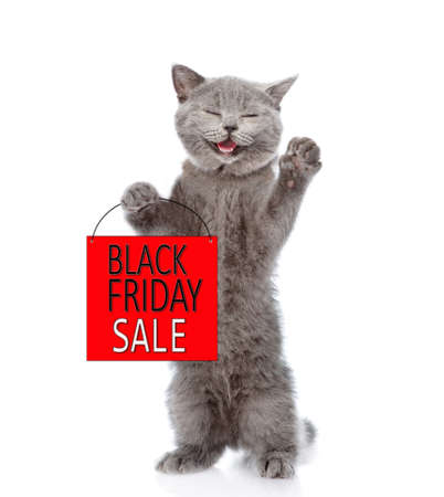 Happy cat holds shopping bag with black friday text. isolated on white background.