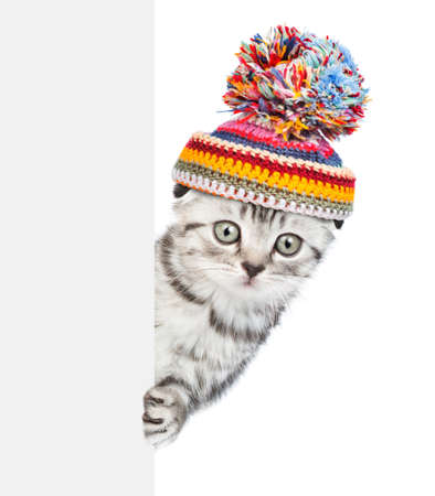 Kitten wearing a warm hat with pompon peeks behind empty banner. isolated on white background. Imagens