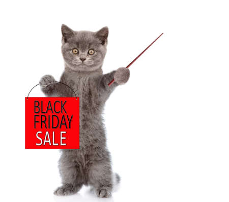 Cat holds shopping bag with black friday text and points away on empty space. isolated on white background. Imagens