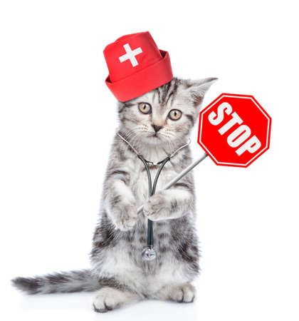 Kitten dressed like a doctor with a stethoscope on his neck and sign stop in paw. isolated on white background. Imagens