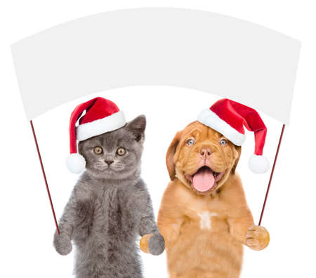 Funny puppy and kitten wearing a red christmas hats holds a blank banner mock up on wood stick. isolated on white background.