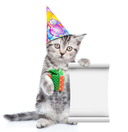 Cat wearing a birthday hat holds empty list and gift box. isolated on white background.