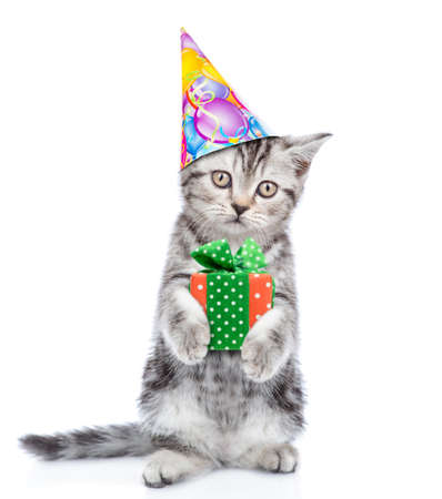 Tabby kitten wearing a party hat holds gift box. isolated on white background .. Archivio Fotografico