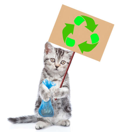 Kitten holds plastic bag and placard with recycling symbol. Eco concept. Isolated on white background. Imagens