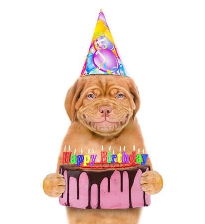 Funny puppy wearing a party hat holds birthday cake with many burning candles. isolated on white background.
