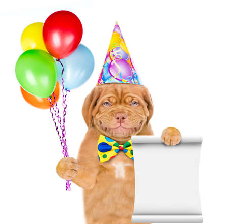 Smiling puppy wearing a birthday hat holds balloons and empty list. isolated on white background.