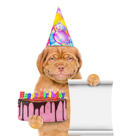 Funny puppy wearing a party hat holds birthday cake with many burning candles and empty list. isolated on white background.
