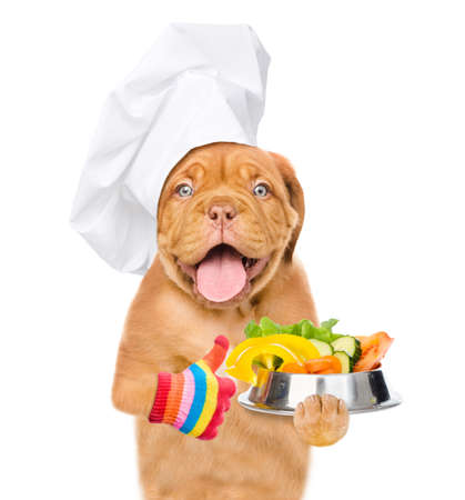 Funny puppy wearing a chef's hat holds a bowl of vegetables and shows thumbs up gesture. isolated on white background.