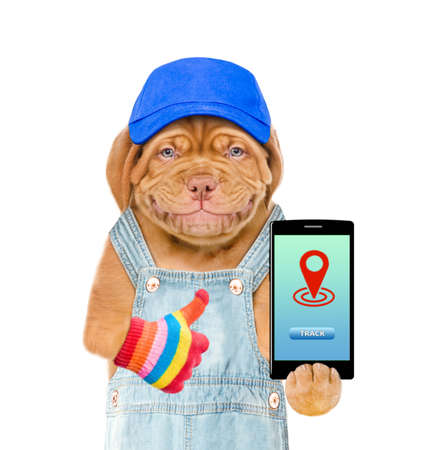 Smiling puppy wearing a blue cap and overalls holds smartphone with tracking symbol and shows thumbs up. Tracking concept. Isolated on white background. 写真素材