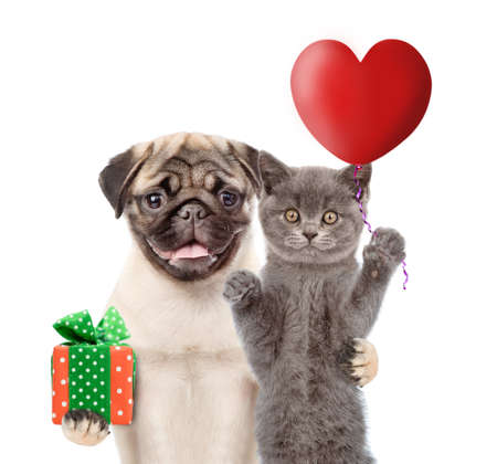 Cat and dog hold heart shaped balloon and gift box. Valentines day concept. isolated on white background.