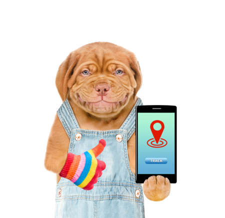 Smiling puppy wearing overalls holds smartphone with tracking symbol and shows thumbs up. Tracking concept. Isolated on white background.