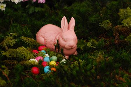 Easter bunny in the moss Standard-Bild