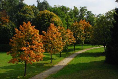 Path through park