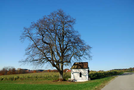 Chapel with Tree Stock Photo