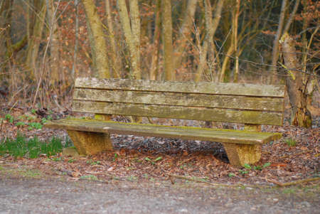 Bench with moss