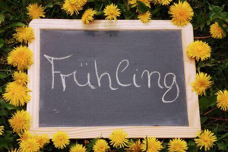 Slate framed with dandelion with lettering Fruehling