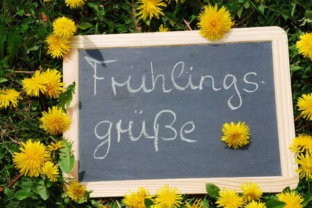 Slate lying labeled Fruehlingsgruesse in the grass and flowers