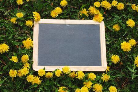 Blackboard blank lying in the grass with flowers