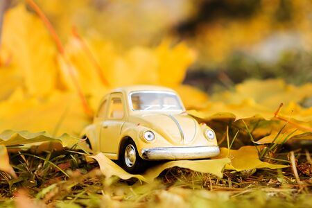 Yellow retro toy car on autumn maple leaf background. Autumn travel and vacation concept 版權商用圖片