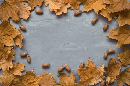 Autumn composition. Frame made of marple leaves and oak acorns on grey wooden background. Flat lay, top view, copy space