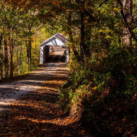 Marshall Covered Bridge - Indiana, USA 写真素材
