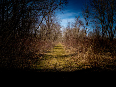 Walking the trails of Taltree Aboretum, Indiana