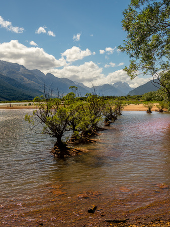 Trees growing out from Lake Wakatipu, New Zealand. Stock fotó