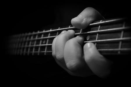 bass Stock Photo - 14875489