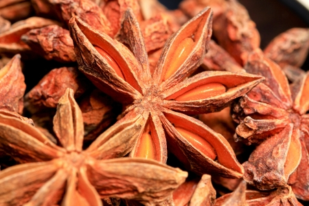 Star anise Stock Photo - 13841329
