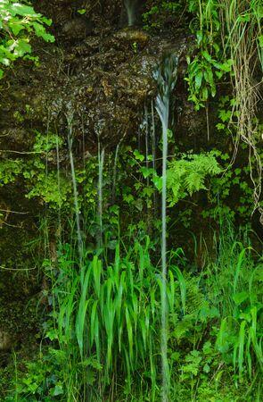 source d eau: L'eau de source Banque d'images