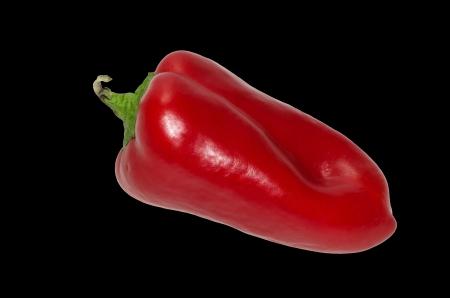 Red pepper Piedmont Stock Photo - 14953826
