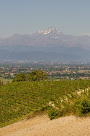 vineyard plain: Piedmont  plains of Saluzzo and the Monviso Stock Photo