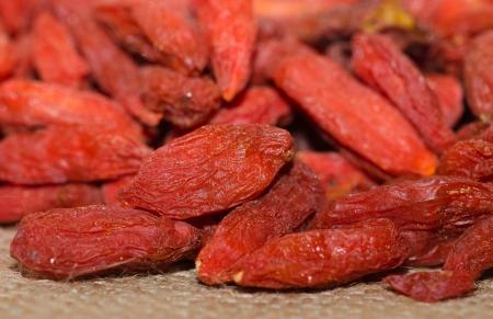 lycium: Goji Berries - Lycium barbarum