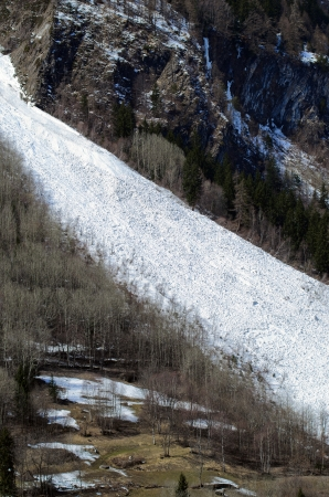 avalanche: Avalanche