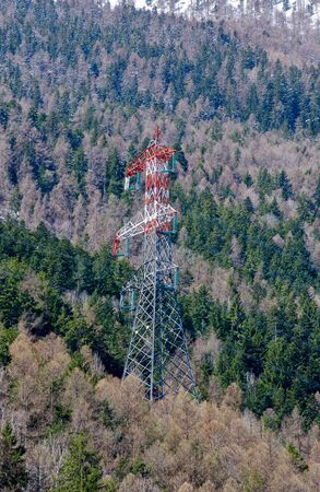 electromagnetism: High voltage pylon in the woods