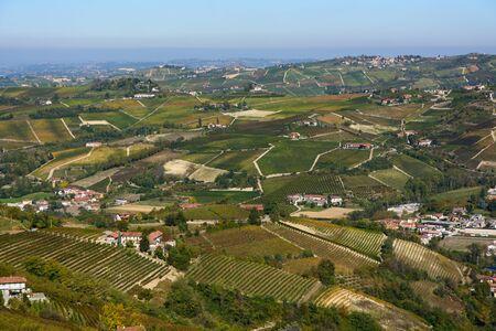 nebbiolo: Vineyards of Langhe in Piedmont - Italy Stock Photo