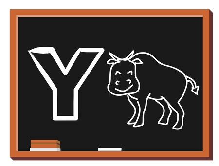 Illustration of alphabet letter Y with a cute little yak isolated on blackboard  Y is for Yak
