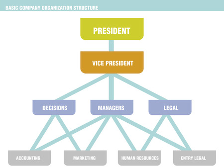 organizational chart: An example company organizational chart, depicting with boxes, horizontal lines and vertical lines. The boxes represent employees. Additionally, horizontal lines between boxes represent company employees who hold similar titles like managers. Employees wh
