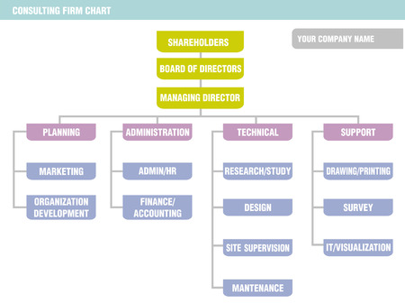 firm: Possible organization chart of a consulting firm. Illustration