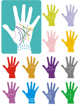 palmistry: The secrets of Chiromancy. Colours contours on palm. Isolated on white background.
