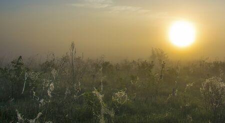 Eng en prachtige zonsondergangen. Stockfoto